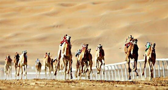 بهترین تفریحات رایگان در سفر به دبی از سینما تا کویر گردی