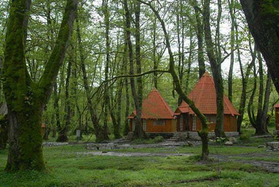 سفر به دره های سبز را تجربه کنید